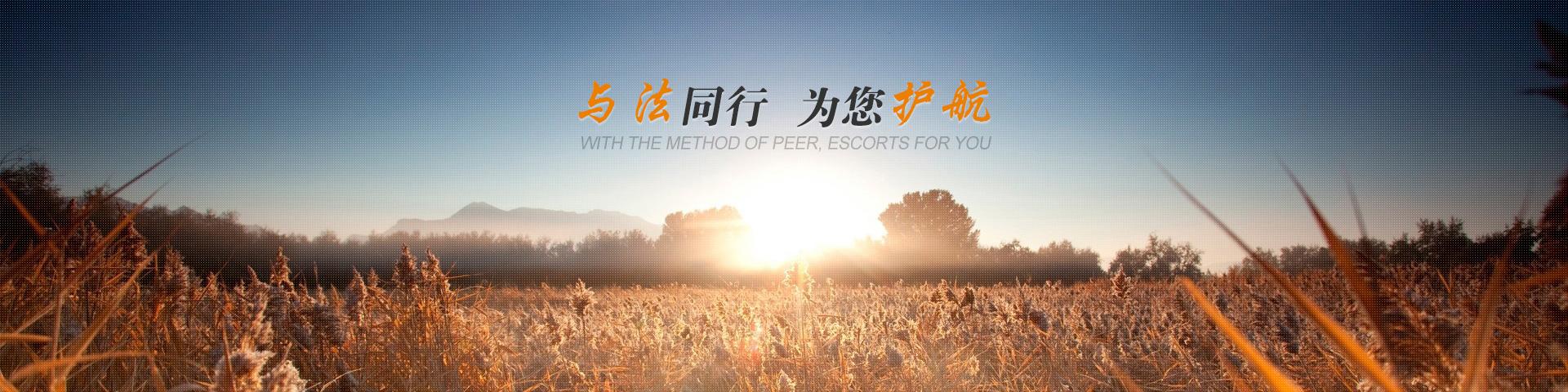 广州天河律师网6